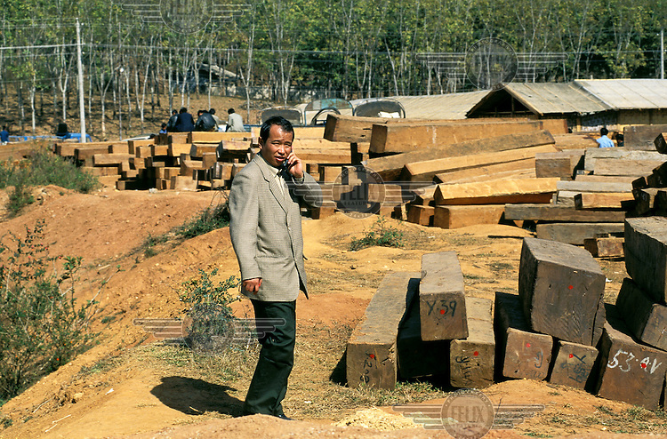 A man uses his mobile telephone in a timber yard on the Chinese side of the nearby border with Myanmar (Burma), where the hardwood teak has been illegally logged..