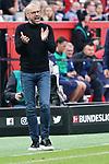 11.05.2019, BayArena, Leverkusen, GER, 1. FBL, Bayer 04 Leverkusen vs. FC Schalke 04 ,<br />  <br /> DFL regulations prohibit any use of photographs as image sequences and/or quasi-video<br /> <br /> im Bild / picture shows: <br /> Peter Bosz Trainer / Headcoach (Bayer 04 Leverkusen),<br /> <br /> Foto &copy; nordphoto / Meuter