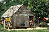 Acre State, Amazon, Brazil. 'Caboclo (riberinho)' family at the door of their house.