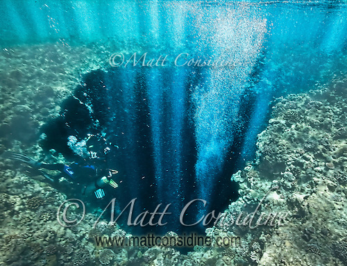 The divers' bubbles coming up through the hole in the top of the cave reflect the sunlight, Palau Micronesia. (Photo by Matt Considine - Images of Asia Collection) (Matt Considine)