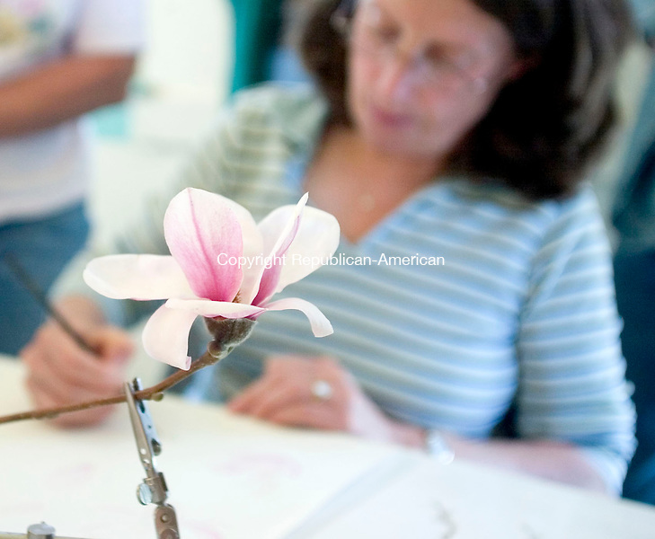 BETHLEHEM, CT- 24 APRIL 07- 042407JT23-<br /> Betsy Rogers-Knox makes a demonstration for her students during a watercolor workshop on magnolias at the Bellamy-Ferriday House in Bethlehem on Tuesday, April 24. <br /> Josalee Thrift Republican-American