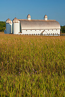 DH Day Farm sits in a summer meadow in Sleeping Bear Dunes National Lakeshore, Leelanau County, Michigan