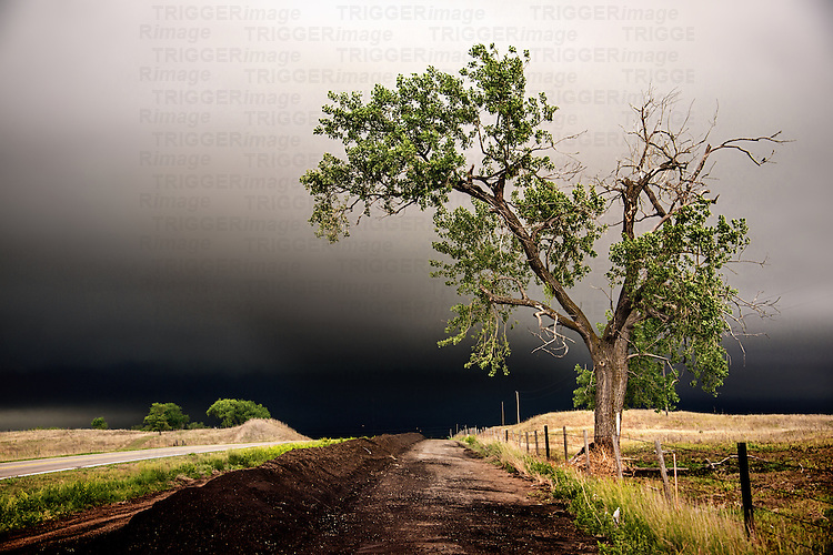 Country scene in USA with dramatic cloud formation above farmland and road with a tree and fence