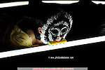 MELK PROD. goes to New Orleans..Marco Berrettini ....Sur une idée de Marco Berrettini..Assisté par Chiara Gallerani..Son : Samuel Pajand et MELK PROD...Costumes : MELK PROD...Lumière et décor : Bruno Faucher et Marco Berrettini..Conception et interprétation : Marco Berrettini, Jean-Paul Bourel, Carine Charaire, Bruno Faucher, Chiara Gallerani, Samuel Pajand, Gianfranco Poddighe..Lieu : Théâtre de la Bastille..Ville : Paris..Le : 4 12 2007..© Laurent Paillier Agence Enguerand