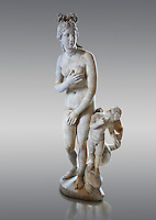 "Aphrodite (Venus to the Romans) ""Capitoline Type"". 2nd centuryAD Roman statue in marble discovered at the Acqua Traversa near Rome.  The statue belong to a series of Roman replicas of a Greek original that reproduce a famous picture of goddess Aphrodite (Venus) and the best known copy is in the Capitoline Museums in Rome. The now lost, the Greek original dates from the 2nd century or 3rd BC and is known as the ""Aphrodite of Knidos"" in which Aphrodite accompanied by a cupid is surprised while bathing.  Inv MR 369   (or Ma 335), The Louvre Mueum, Paris."