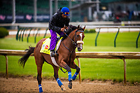 LOUISVILLE, KY - MAY 04: Gormley gallops at Churchill Downs on May 04, 2017 in Louisville, Kentucky. (Photo by Alex Evers/Eclipse Sportswire/Getty Images)