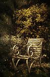Garden chair in autumn with dappled sunlight