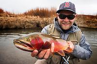 A flyfisherman holds a Yellowstone cutthroat trout caught on a small stream in western Montana.