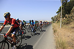 The peloton including Nairo Quintana (COL) Movistar Team in full flight after the start of Stage 4 of the La Vuelta 2018, running 162km from Velez-Malaga to Alfacar, Sierra de la Alfaguara, Andalucia, Spain. 28th August 2018.<br /> Picture: Eoin Clarke   Cyclefile<br /> <br /> <br /> All photos usage must carry mandatory copyright credit (&copy; Cyclefile   Eoin Clarke)