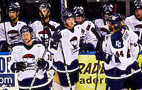 The Charlotte Checkers, an American Hockey League (AHL) ice hockey team based in Charlotte, NC, competed in the second round of the American Conference (ECHL) semi-finals in 2010. The Checkers play at Time Warner Cable Arena. The professional hockey team is affiliated with the NHL's Carolina Hurricanes.