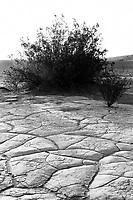 Dried Mud, Death Valley NP, Film