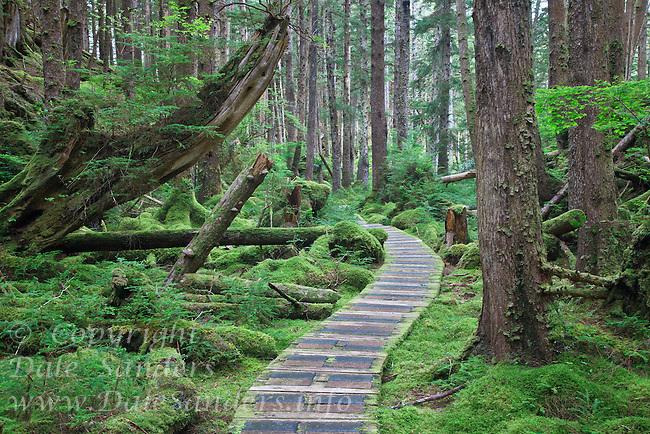 Trail to SGang Gwaay or Ninstints, in Gwaii Hanaas National Park on the islands of Haida Gwaii ( formerly Queen Charlotte Islands ), British Columbia, Canada.