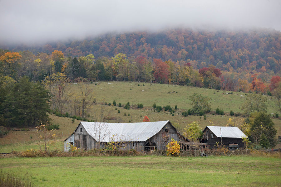 Fall colors on a farm near the Blue Ridge Parkway and the Shenandoah National Forest