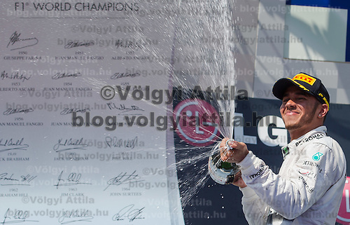 Petronas Mercedes F1 Formula One driver Lewis Hamilton of Great Britain celebrates his victory after winning the Hungarian F1 Grand Prix in Mogyorod (about 20km north-east from capital city Budapest), Hungary on July 28, 2013. ATTILA VOLGYI