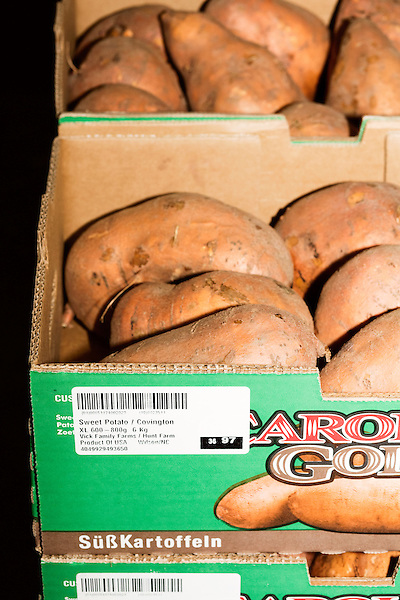 August 22, 2016. Wilson, North Carolina<br />  Every box of sweet potatoes at Vick Family Farms is labeled so as that in case of a food related illness, the batch can be traced back to the field, day of harvest, type of seed and several other data sets. Each box is traced from field to market using a system run through Greenlight broadband. <br /> Vick Family Farms uses Greenlight provided broadband to monitor its tobacco drying barns as well as run its large sweet potato operation. If they lose the network due to recent legal suits brought by the telecom industry on the city of Wilson, who provides the fiber optic broadband, they may be unable to run the business with near the level of efficiency.<br />  Greenlight Community Broadband is a fiber optic internet service provider owned by the city of Wilson, NC. Popular with residents for its reliability and speed, the city started offering the service to towns outside of its municipal limits before a court case brought by the telecom industry took away the city's ability to expand beyond its borders. Several businesses and residents who have come to rely on the utility fear for their livelihoods if the service is discontinued.