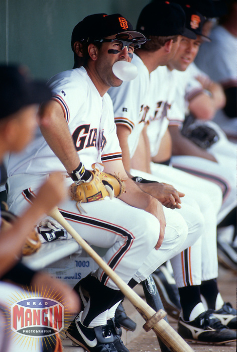 SCOTTSDALE, AZ - Will Clark of the San Francisco Giants blows a bubble in the dugout during a spring training game at Scottsdale Stadium in Scottsdale, Arizona in 1993. Photo by Brad Mangin