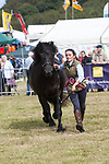 CR0002852 Kinross Show. Erica Hood with Knockandy Abigail, Champion Highland Pony. 11 Aug 2018 © Copyright photograph by Tina Norris. Contact Tina on 07775 593 830 info@tinanorris.co.uk All print sales via Tina Norris. www.tinanorris.co.uk http://tinanorris.photoshelter.com