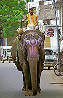Transporte em elefante em Jaipur. Índia. 1998. Foto de Vinicius Romanini.