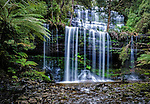 The magnificent Russell Falls in the Mt Field National Park in Tasmania, Australia