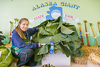 1st place ribbon for the largest Green Cabbage (56.1 pounds) at the 2007 Alaska State Fair in Palmer, Alaska.
