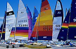 Colorful sails along shoreline Hobey cats, Monterey Bay California USA