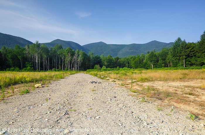 Landing of the Kanc 7 timber harvest project in the area of Forest Road 510 along the Kancamagus Scenic Byway (route 112) in the White Mountains, New Hampshire USA.