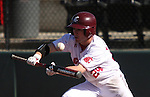 Garry Kuykendall, Washington State University sophomore outfielder, successfully lays down a bunt during the Cougars Pac-10 conference baseball game against UCLA on April 4, 2009, at Bailey-Brayton Field in Pullman, Washington.  The Cougars defeated the Bruins in a close game, 4-3.