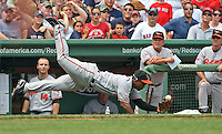 Baltimore Orioles third baseman Melvin Mora made a diving snowball catch on a Kevin Youkilis foul pop up in the first inning of the Red Sox 6-2 loss at Fenway Park on Sunday, July 26, 2009.