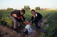 Young farmers playing with irrigation water