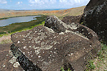 The interior of the Rano Raraku caldera just above the crater lake contains many finished and unfinished moai. Erosion has covered many nearly completely and it's possible more lay beneath the ground, covered by hundreds of years of erosion.<br /> Statues located on the interior slopes of Rana Raraku. Centuries of erosion have buried many of the Moai around the rim of the caldera.