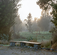 Misty dawn with old totara trees and bench on farmland in Whataroa, South Westland, West Coast, New Zealand, NZ
