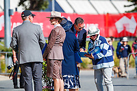 The First Horse Inspection for the CCI3*-L. 2019 AUS-Mitsubishi Motors Australian International 3 Day Event. Victoria Park. Adelaide. South Australia. Copyright Photo: Libby Law Photography