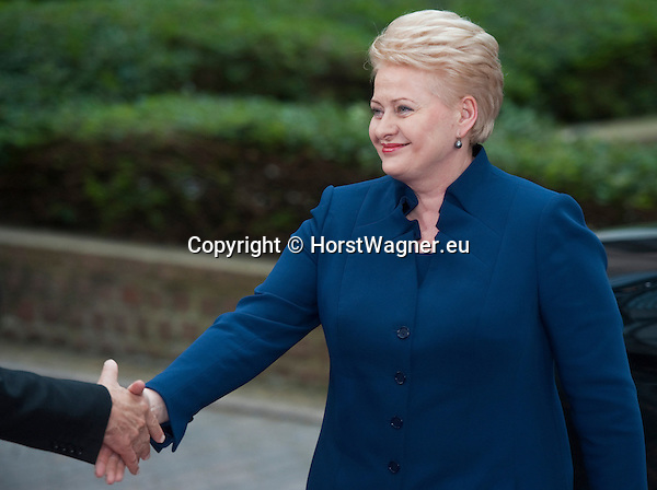Brussels-Belgium - May 27, 2014 -- European Council, EU-summit, meeting of Heads of State / Government for an informal dinner to evaluate and to conclude the results of the European elections; here, arrival of Dalia GRYBAUSKAITE, President of Lithuania -- Photo: © HorstWagner.eu
