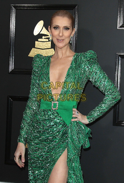 12 February 2017 - Los Angeles, California - C&eacute;line Dion. 59th Annual GRAMMY Awards held at the Staples Center.  <br /> CAP/ADM<br /> &copy;ADM/Capital Pictures