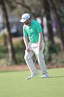 Brandon Grace (RSA) during round 1 of the Valspar Championship, at the  Innisbrook Resort, Palm Harbor,  Florida, USA. 10/03/2016.<br /> Picture: Golffile | Mark Davison<br /> <br /> <br /> All photo usage must carry mandatory copyright credit (&copy; Golffile | Mark Davison)