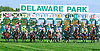 Good Roll winning at Delaware Park on 10/5/16