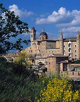 ITA, Italien, Marken, Universitaetsstadt Urbino | ITA, Italy, Marche, University town Urbino