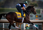 OCT 24: Breeders' Cup Dirt Classic entrant Yoshida, gallops at Santa Anita Park in Arcadia, California on Oct 24, 2019. Evers/Eclipse Sportswire/Breeders' Cup