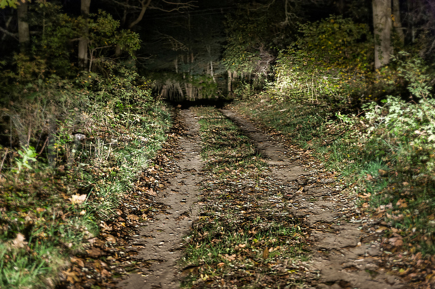 Foreboding dirt road at night.