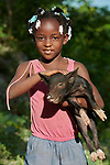 Six-year old Kencha Phael holds a baby pig on the Haitian island of La Gonave where Service Chr&eacute;tien d&rsquo;Ha&iuml;ti is working with survivors of Hurricane Matthew, which struck the region in 2016.<br /> <br /> SCH, a member of the ACT Alliance, supports agriculture on the island by providing tools, seeds, and technical support and training for farmers, as well as donkeys, goats, and pigs for farm families to raise.<br /> <br /> Parental consent obtained.