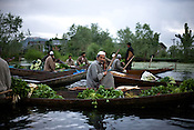 Boatmen are seen selling vegetables on the floating market on the Dal lake in Srinagar, summer capital of Jammu and Kashmir, India. ..Kashmir went into polls on the 4th round of Indian general elections. About 26 percent polling was recorded in the Indian parliamentary elections held in Kashmir on Thursday, May 7th 2009. The poll percentage was on the higher side this year as compared to 2004 polls when 15.04 percent polling was recorded.