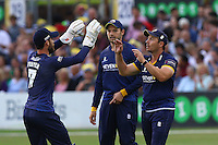 Graham Napier (R) of Essex is congratulated by his team mates on his catch to dismiss Jacques Rudolph during Essex Eagles vs Glamorgan, NatWest T20 Blast Cricket at the Essex County Ground on 29th July 2016