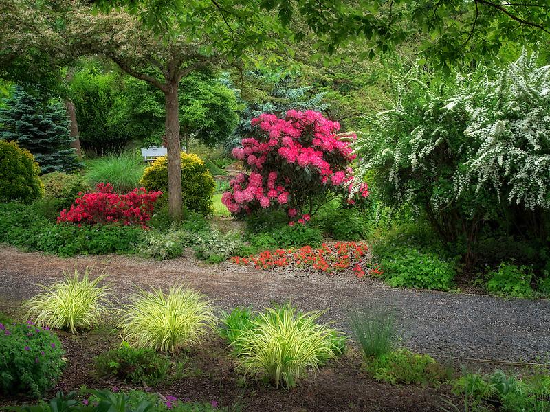 Pathway. The Oregon Garden. Silverton, Oregon