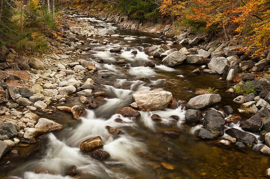Mountain stream in autumn, Vermont, USA