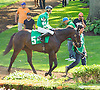 Royal Brute before The Strike Your Colors Stakes at Delaware Park on 8/5/15