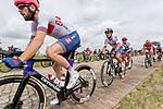 Chris Lawless and Mark Cavendish (GBR) in action during the Elite Men's Road Race during the 2019 UEC European Road Championships, Alkmaar, The Netherlands, 11 August 2019.<br /> <br /> Photo by Thomas van Bracht / PelotonPhotos.com | All photos usage must carry mandatory copyright credit (Peloton Photos | Thomas van Bracht)