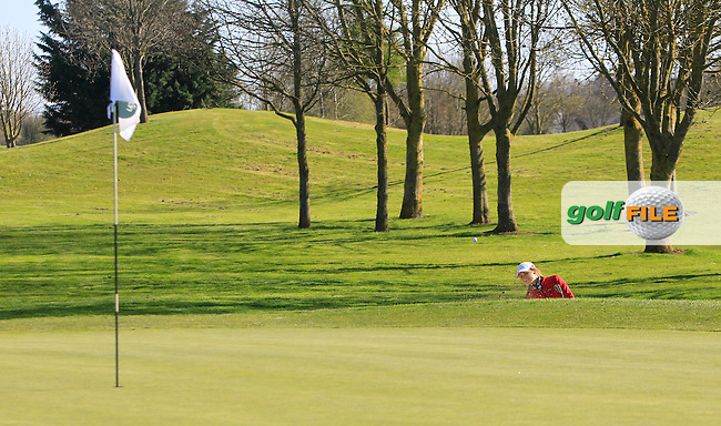 Sophie Lamb (ENG) on the 7th green during Round 2 of The Irish Girls Open Strokeplay Championship in Roganstown Golf Club on Saturday 18th April 2015.<br /> Picture:  Thos Caffrey / www.golffile.ie