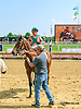 Heart of Midway winning at Delaware Park on 8/24/15
