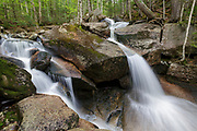 A small cascade on Whitehouse Brook in Franconia Notch of Lincoln, New Hampshire on a spring day. During the late 1800s, Whitehouse Mills, owned by Frank W. Whitehouse, was located at the confluence of Whitehouse Brook and the Pemigewasset River.