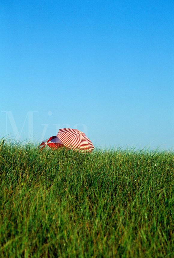 Dune grass and beach umbrellas, Nauset Beach,